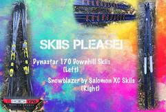 Skiis.jpg