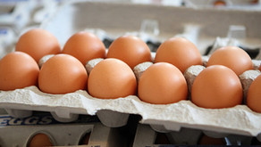 The Cost of Mobile-Pastured Eggs