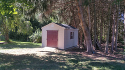10x14 Workshop Shed with Vinyl Siding