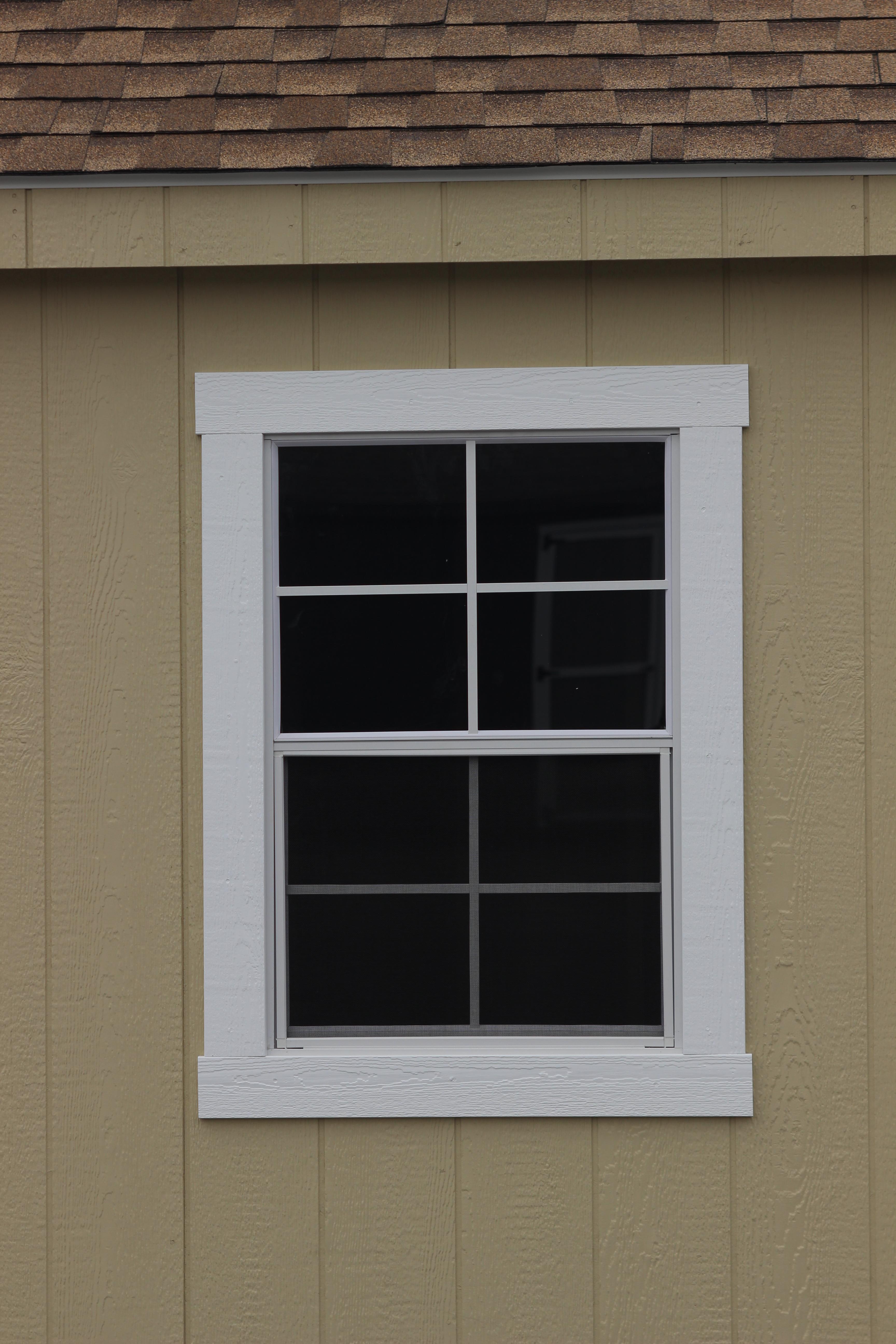 """2- 24x36"""" Windows"""