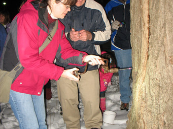 """Bendix Woods to host """"Maple Syrup by Moonlight"""""""