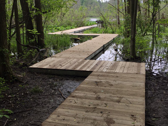 Trail improvements at Spicer Lake provide access to nature observation