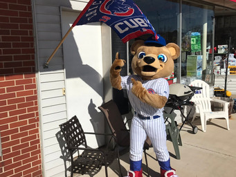 Bear Cub Spotted in Downtown New Carlisle