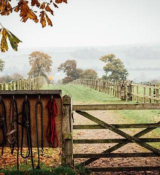 hillfields farm.jpg