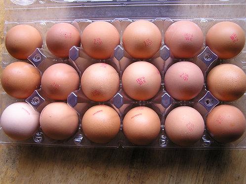 Free-Range Eggs x18