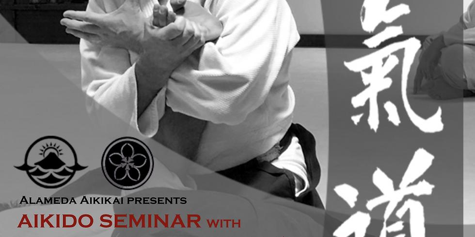 Seminar with John Brinsley Sensei Aikido Daiwa