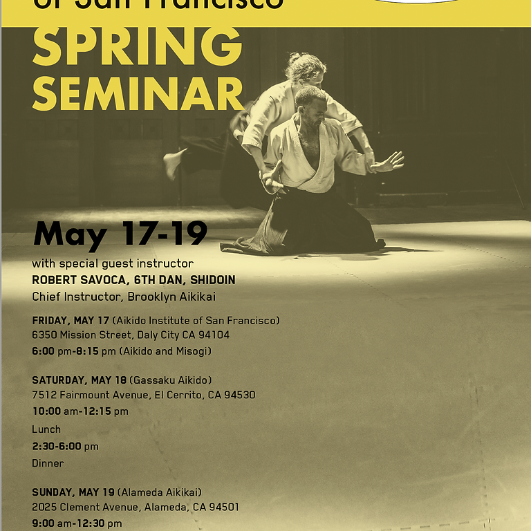 Seminar with Robert Savoca Sensei (Brooklyn Aikikai)
