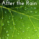 After the Rain thumbnail (1).jpg
