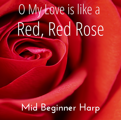 O My Love is like a Red Red Rose Thumbna