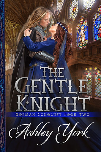 The-Gentle-Knight-e-reader.jpg
