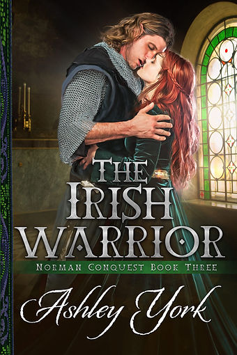 The Irish Warrior by Ashley York