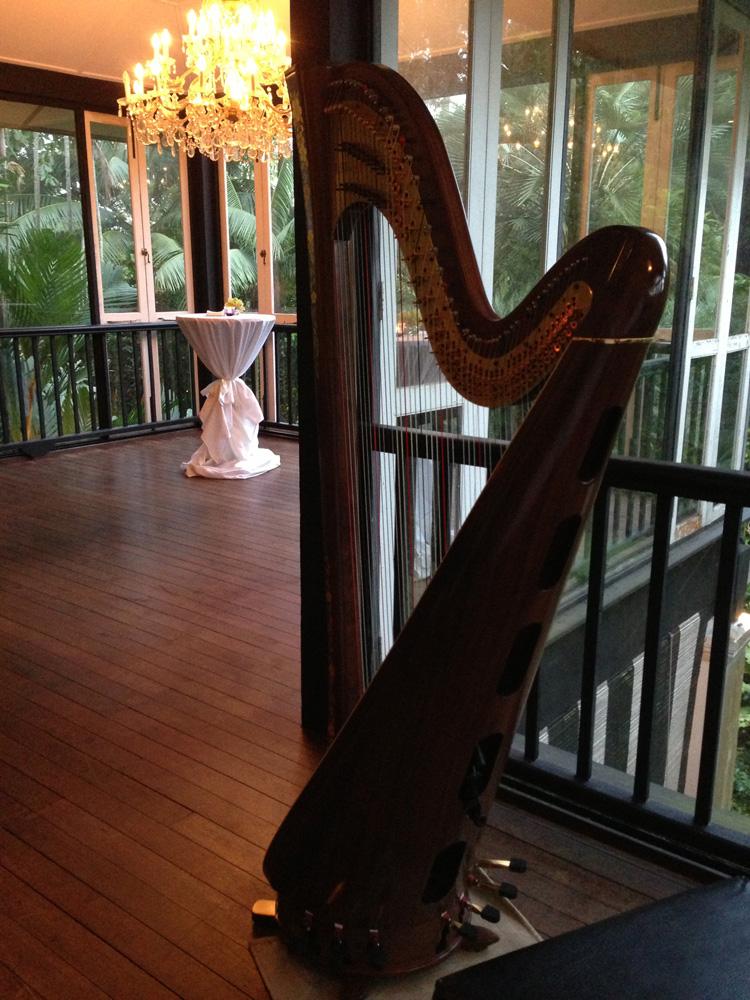 Hummingbird - Harp 1
