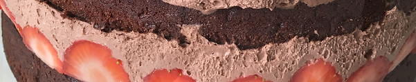 Gluten-free dairy-free egg-free vegan-friendly chocolate cake with gluten-free dairy-free egg-free vegan-friendly chocolate coconut whipped cream and strawberries