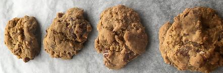 Gluten-free dairy-free egg-free vegan-friendly chocolate chip cookies