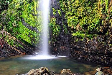 El Yunque | Puerto Rico