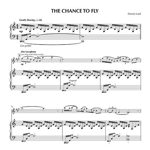 THE CHANCE TO FLY (Flute, Clarinet, Alto Sax)