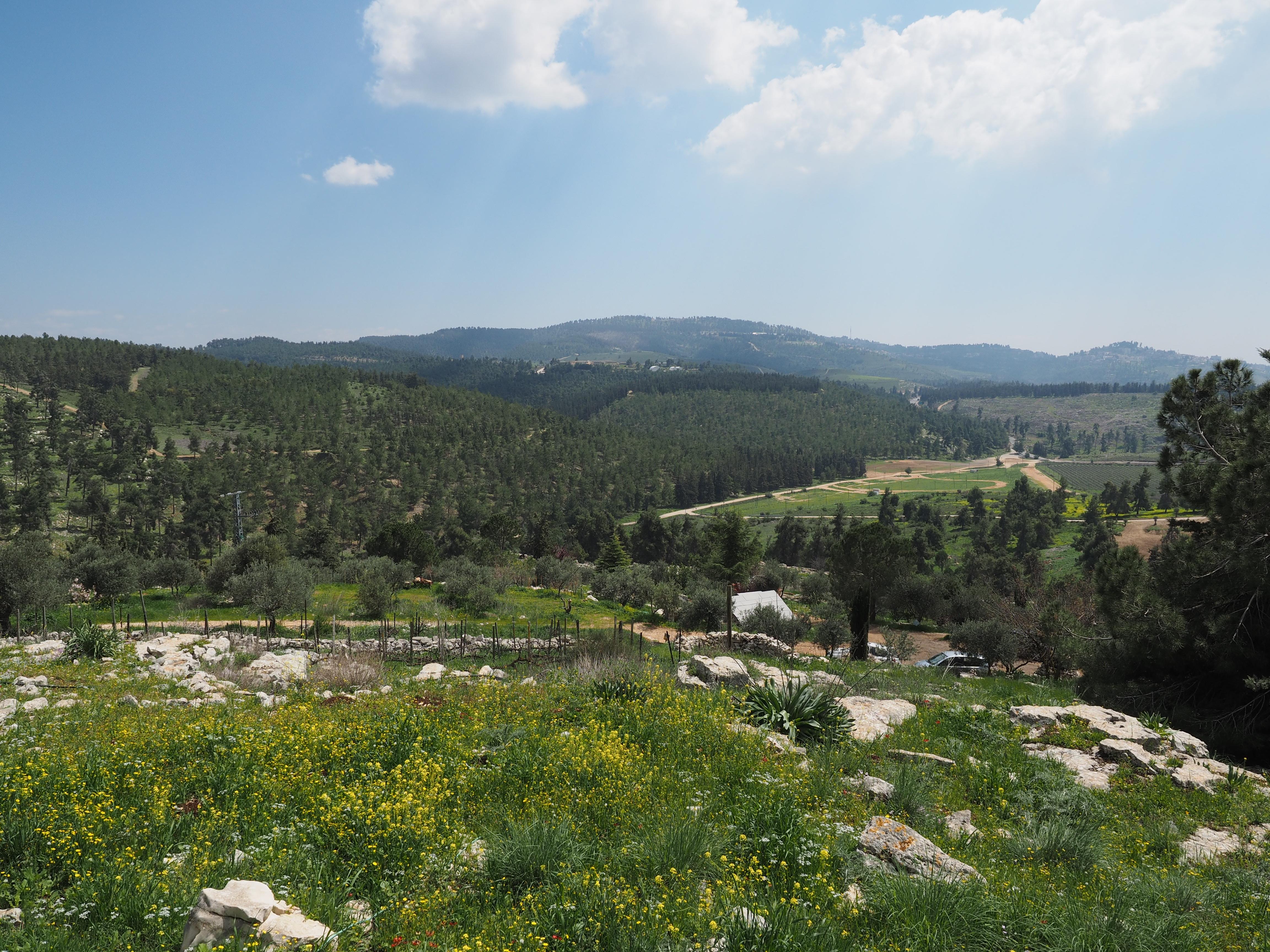 kadita_cabin5_view