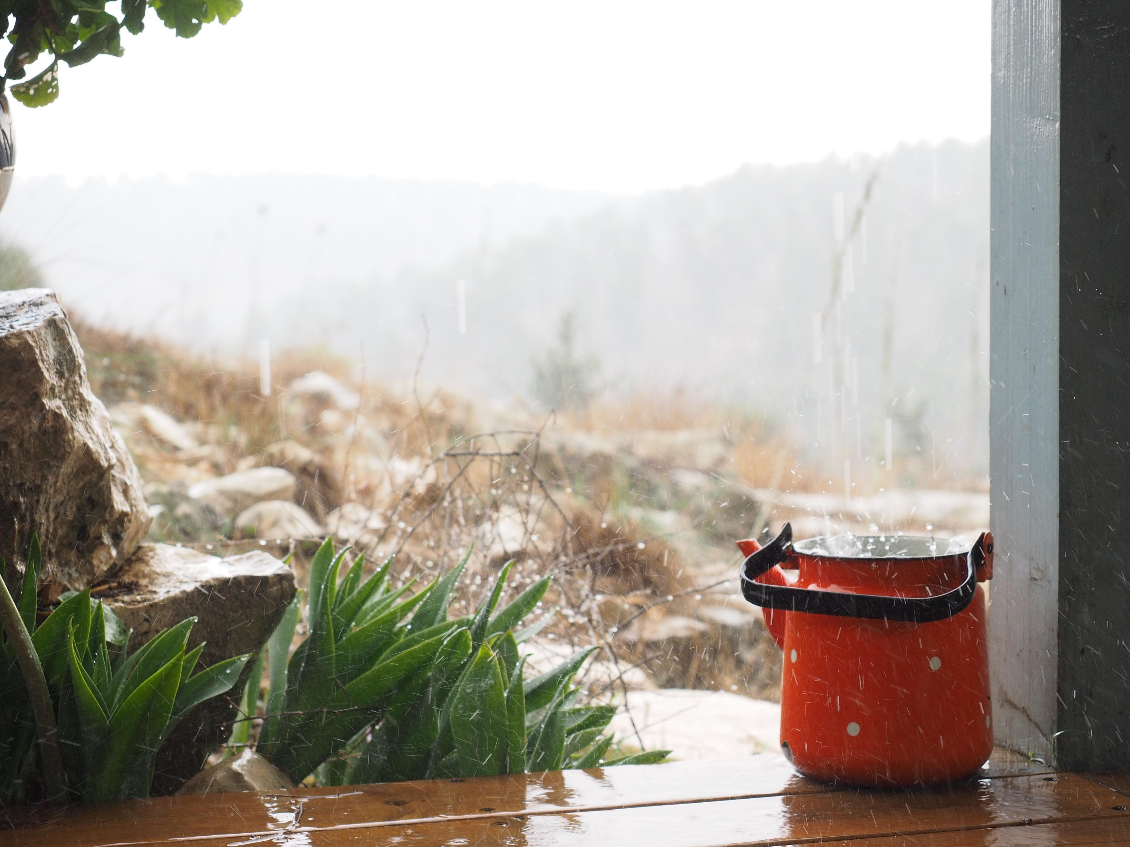 kaidta_cabin5_rain