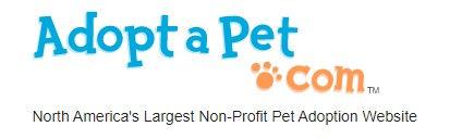 Adopt A Pet Logo.jpg