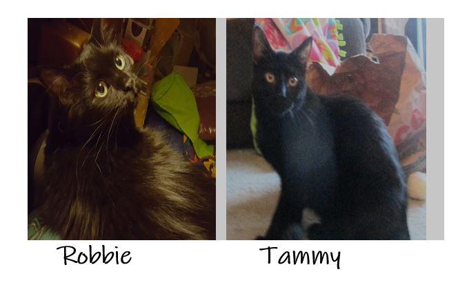 Robbie & Tammy