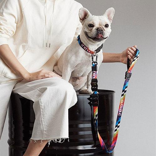 PETKIT Shock-Absorbing Dog Leash