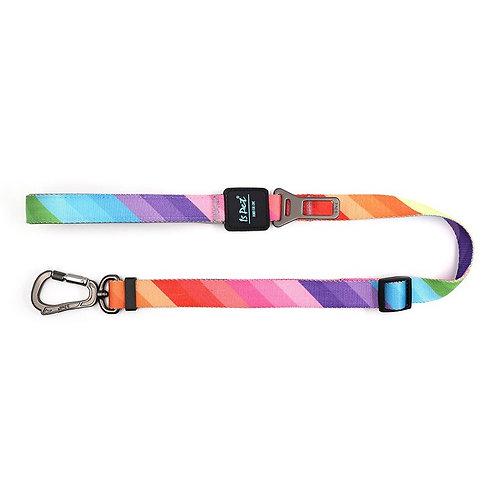 Multipurpose Car Seat Belt & Leash for Dogs