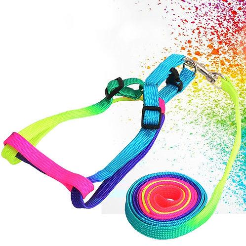 Rainbow Dog Harness and Leash Set