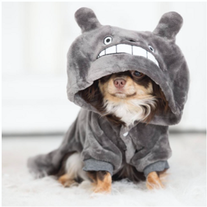 Warm Soft Fleece Dog or Cat Clothes Totoro