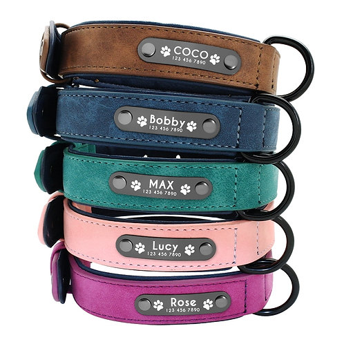 Leather Dog Collar with custom name tags