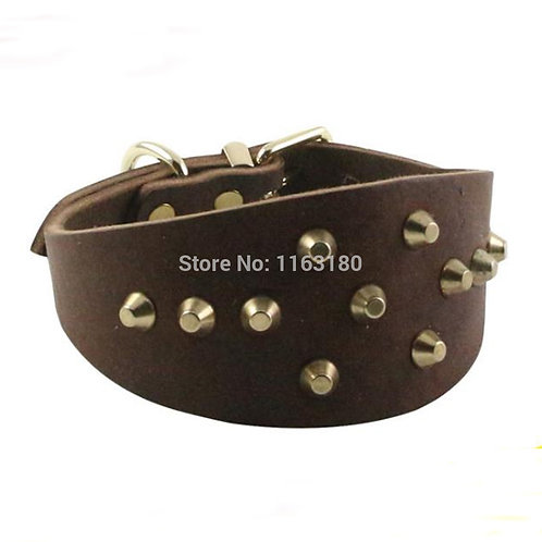 Genuine Leather Dog Collar with Studs