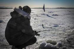 Battle Dawgs Alaska Iditarod Camp