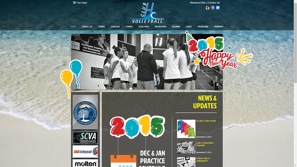 artsthetic web design and club h volleyball 4.png