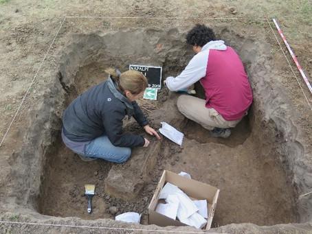 """""""Buscamos aportar evidencia forense a la documentación histórica y los relatos orales"""""""