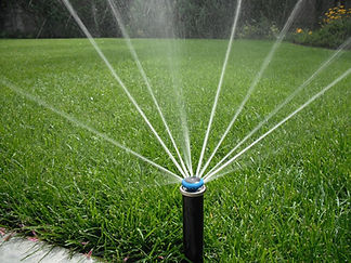Fine rotating watering heads - save money and water!