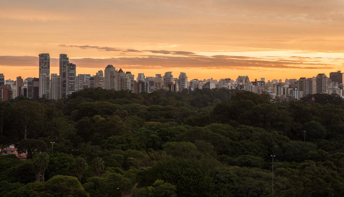 São Paulo SP - Brasil
