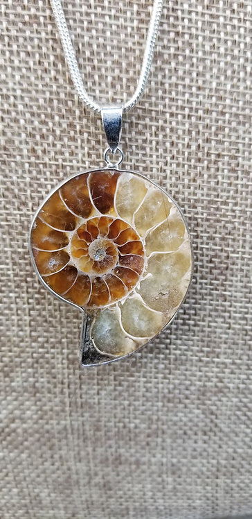 Ammonite Healing Crystal Pendant With Silver Chain