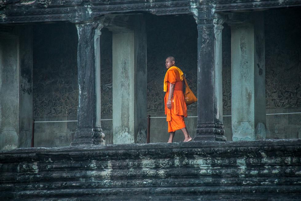 Monk in Ankor Wat.