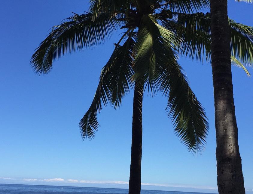 Grand Anse (sud)