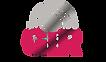 Logo GIR.png