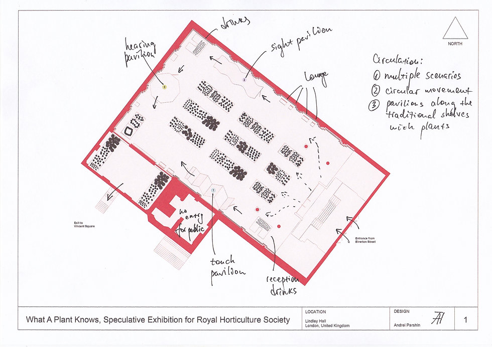 Site Plan (with notes).jpg