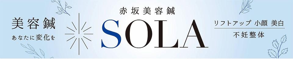 SOLA横断幕.jpg