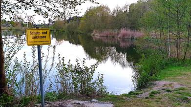 Vergrößerung der Laichzone am Heinzingersee