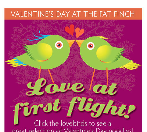 The Fat Finch Email Banner | Albuquerque