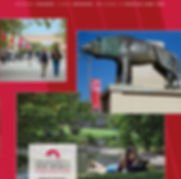 UNM Foundation Annual Report Design