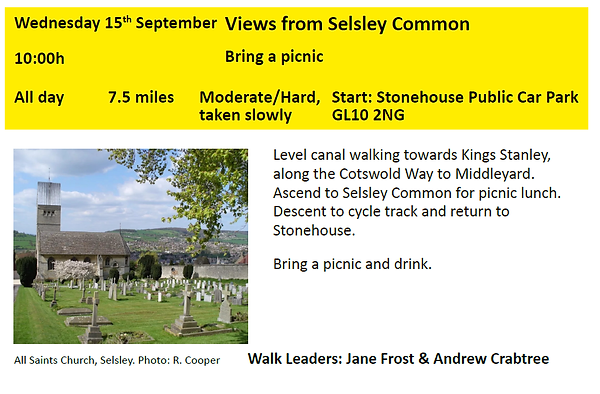 Selsey common.png