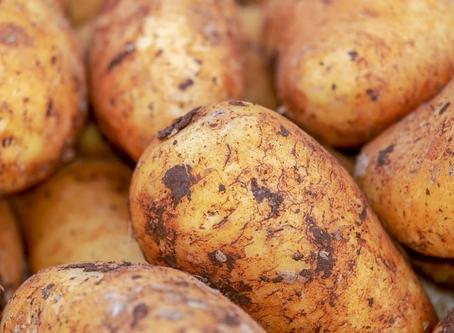 Gut-Loving Potato Salad