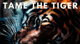 Fight or flee the stress/tiger? Stop. Meditate and chill! Live longer. Here's why.