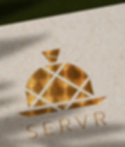 SERVR branding WEBSITE DESIGN BRANDING L
