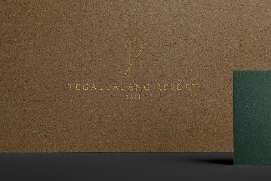 LOGO EXCUSEMYEGO branding luxury website