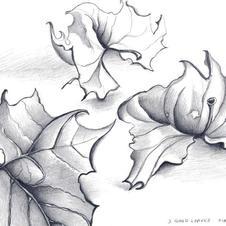 3 Good Leaves 2006